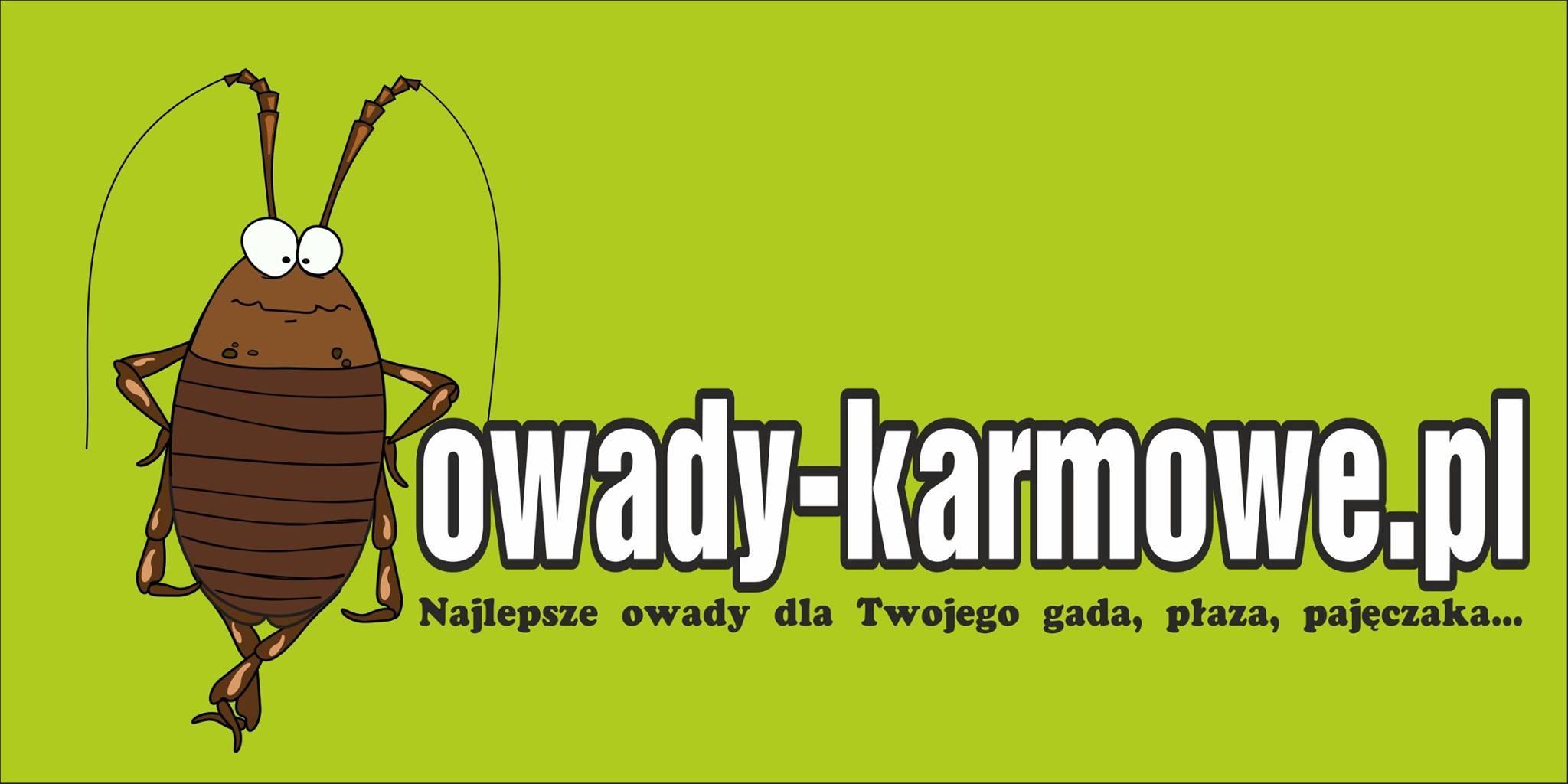 owady-karmowe.pl